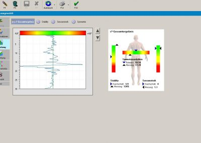 MFT S3-Check analysis software