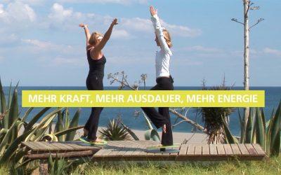 """Neue Übungsserie """"New Energy Coordination"""" für die MFT Fit Disc"""