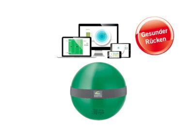 MFT Balance Sensor Sit Ball
