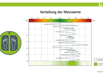 Verteilung der Messwerte in der MFT S3 CheckPro Software